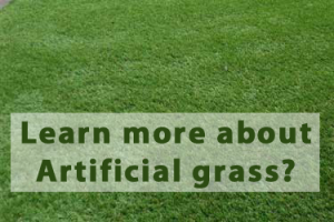 learn-about-artificial-grass-essex